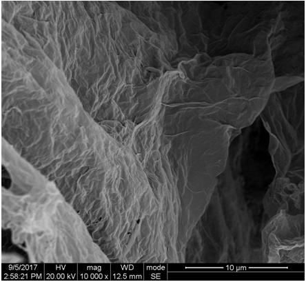 该超轻石墨烯气凝胶相比于一般气凝胶有更疏松的孔结构和更薄的